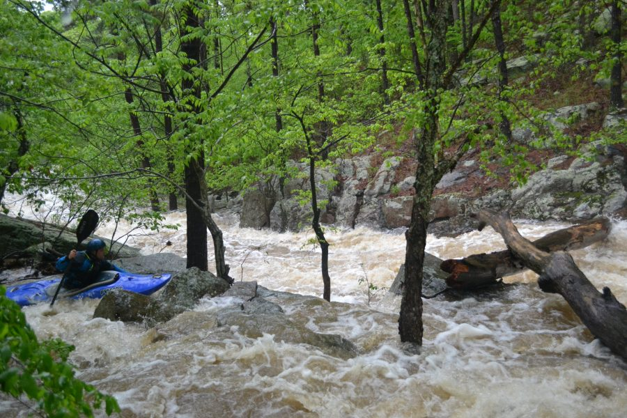 Pickle Creek Rapid